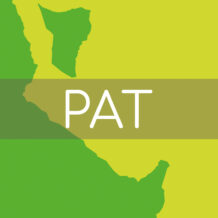 Il Garante della Privacy ha dettato nuoive regole tecniche per l'attuazione del PAT